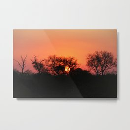 Sunset in Sabi Sands 2 Metal Print