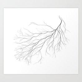 Mycelium (pencil drawing) Art Print