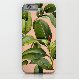 Botanical Collection 01 iPhone Case