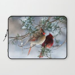 Shining on Her Own (Cardinal) Laptop Sleeve