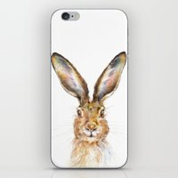 hare iPhone & iPod Skins featuring HARE by Patrizia Ambrosini