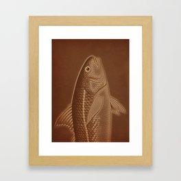 Piscibus 6 Framed Art Print