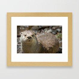 Otter Art, Otter Canvas Print, Photographic Print, Art Print, Framed Print, Greeting Card, Framed Art Print