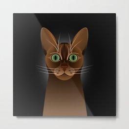Abyssinian cat portrait Metal Print