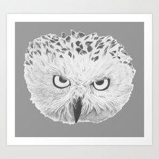 Snowy Owl Grey Art Print