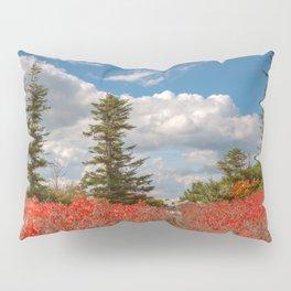 Autumn Huckleberry Wonderland Pillow Sham