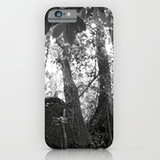 Umbilical Slim Case iPhone 6s