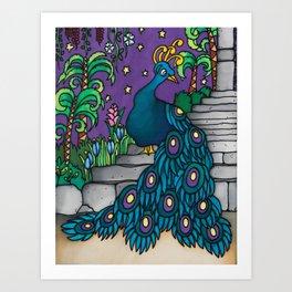 Felipe - a flamboyant peacock Art Print