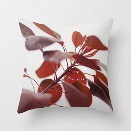 Red leaves in a London Fog by Diana Eastman Throw Pillow