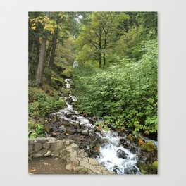 Columbia River Gorge National Scenic Area ( wahkeena) Canvas Print