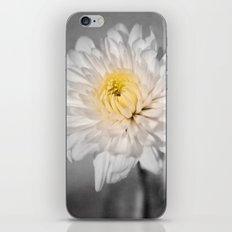 The Light Inside II iPhone & iPod Skin