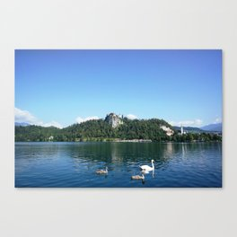 Swans in Bled Canvas Print