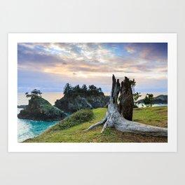 Lonely Tree Stump Art Print