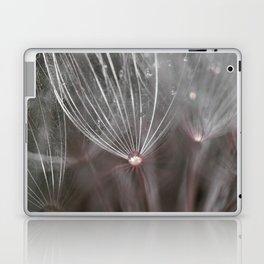 Salsify seeds Laptop & iPad Skin