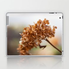 Winter Hydrangea II Laptop & iPad Skin
