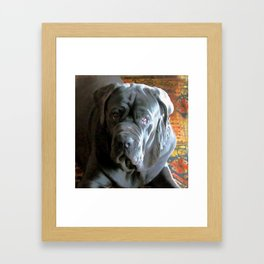 My dog Ovelix! Framed Art Print