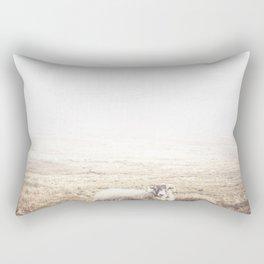 Sheep, Ireland. Rectangular Pillow