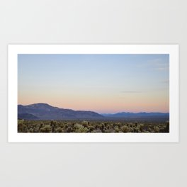 Joshua Tree Cholla Cactus Sunset Art Print