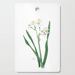 Cluster Daffodils Botanical Illustration Cutting Board