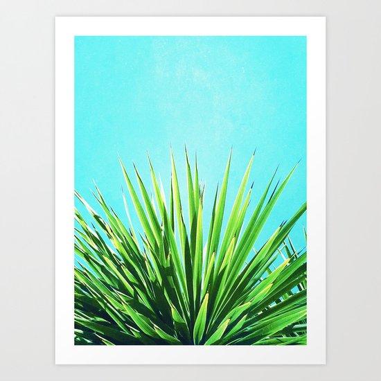 Solar Yucca Palm Art Print