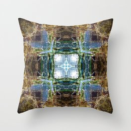 Cabrillo National Monument: Tide Pools Throw Pillow