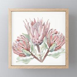 Protea #society6 #buyart Framed Mini Art Print