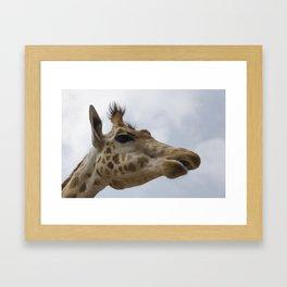 Peralta giraffe Framed Art Print
