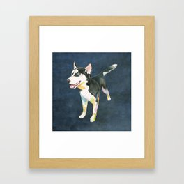 Husky Puppy Framed Art Print