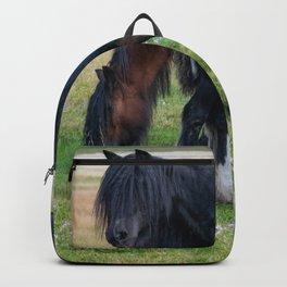 Gypsy Vanner Horses 0258 - Colorado Backpack