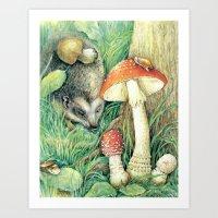 mushrooms Art Prints featuring Mushrooms by Natalie Berman