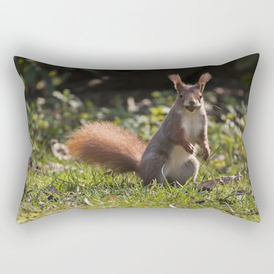 Do you have a nut - Cute squirrel animal on #Society6 Rectangular Pillow