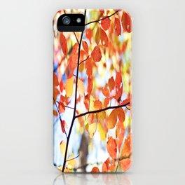falls color iPhone Case