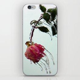 fROSEn iPhone Skin
