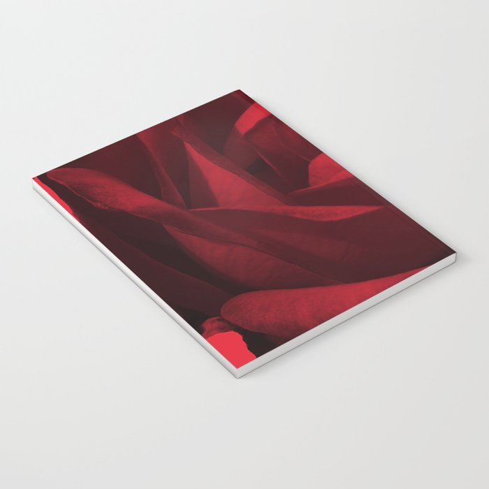 rose rouge 5 Notebook