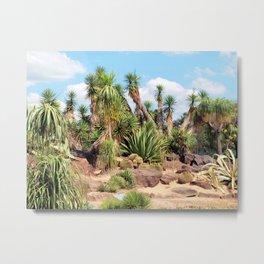 Arid Zone Metal Print