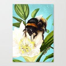 Bee on flower 5 Canvas Print