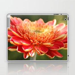 Gerbera Daisy Laptop & iPad Skin