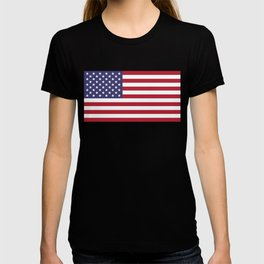 American Flag Scale G-spec 10:19 T-shirt
