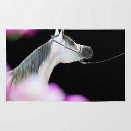 horse collection. arabian grey Rug