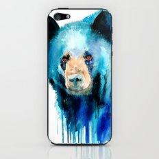 American black bear iPhone & iPod Skin