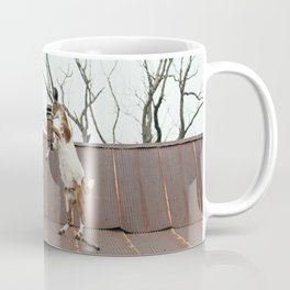 Goats Sparring on the Roof Coffee Mug
