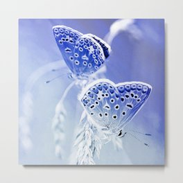 day moth butterfly blue photochrom tinted aesthetic butterfly art altered photography Metal Print