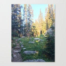 Wild Basin Canvas Print