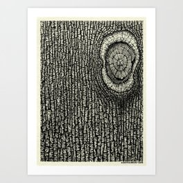Nature's Perfect Imperfection - Visothkakvei Art Print