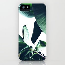 Ficus Elastica #26 #foliage #decor #art #society6 iPhone Case