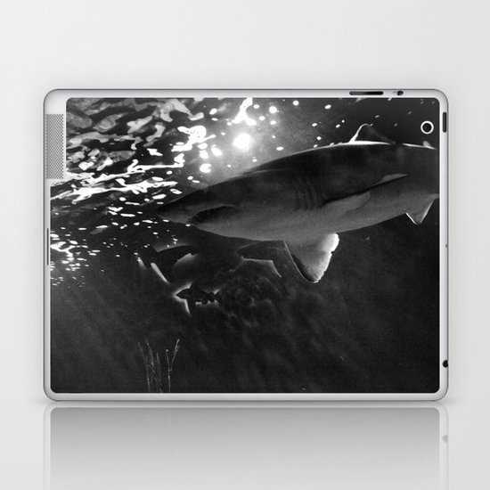 Shark Laptop & iPad Skin