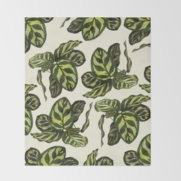 calathea botanical interior plant Throw Blanket