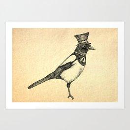 Hello Mister Magpie Art Print