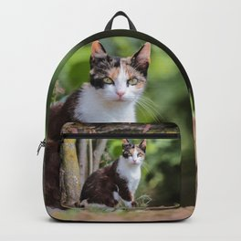 Are you meowing to me? Backpack