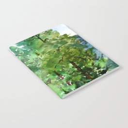 Mountain Forest Notebook